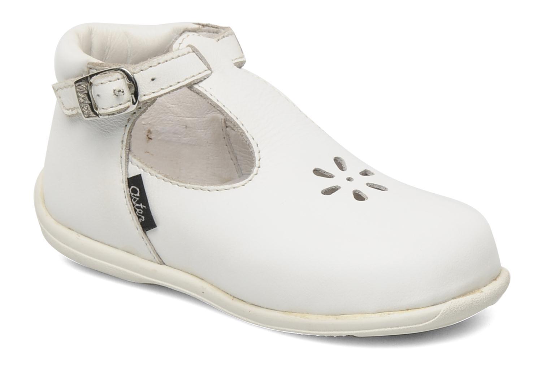 Boots en enkellaarsjes Odjumbo by Aster