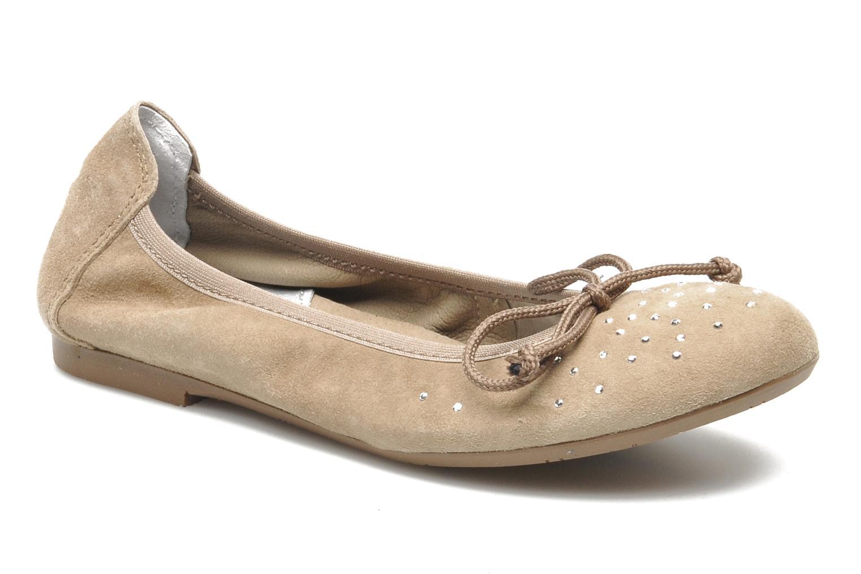 Ballerina's Begonia by Acebo's