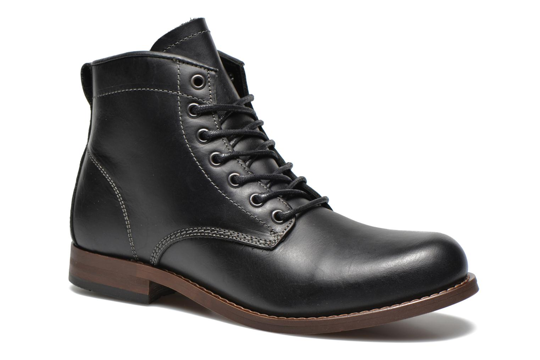 Boots en enkellaarsjes LAUDIAS by Aldo