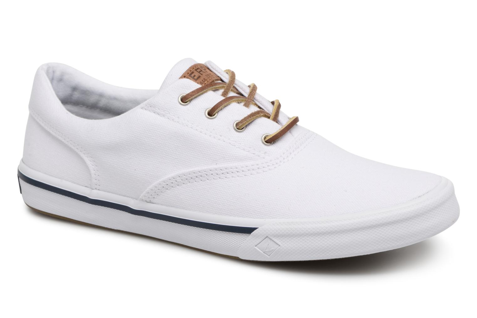 Sneakers Sperry Wit