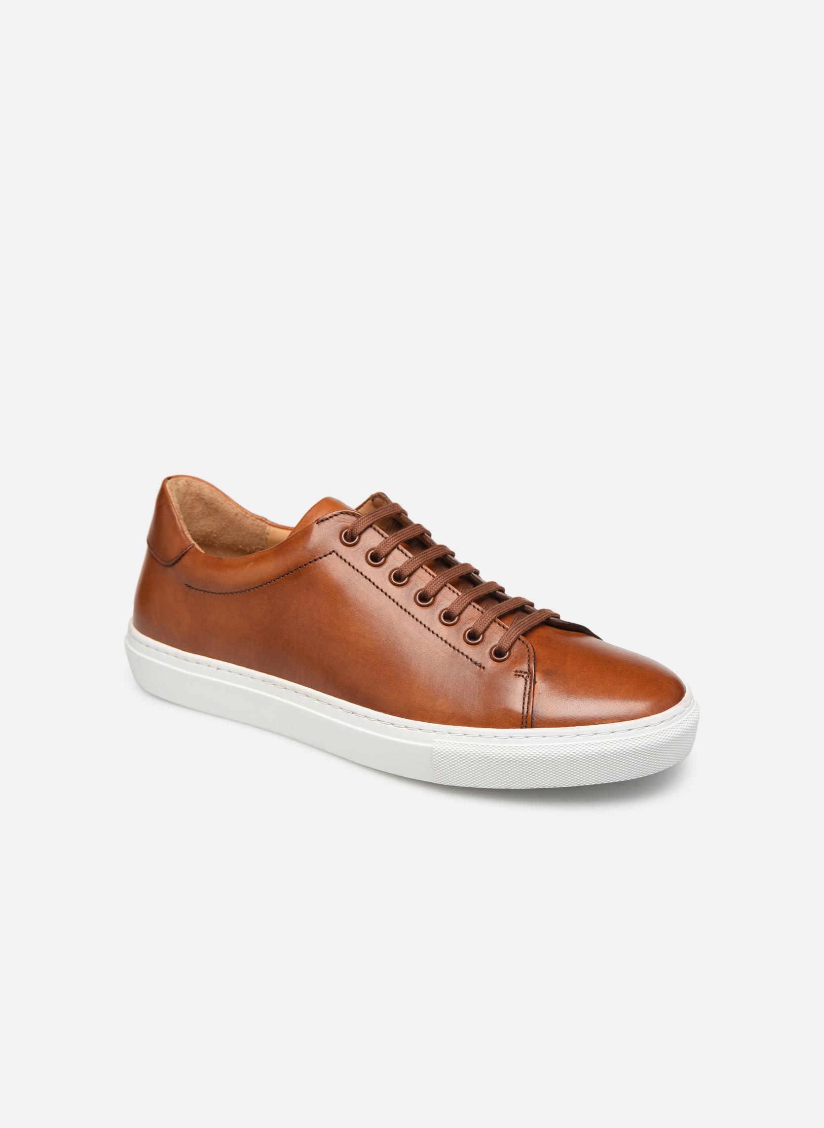 Sneakers Sledgers Bruin