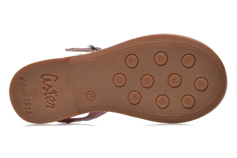 Sandales et nu-pieds Aster Vibride Rose vue haut