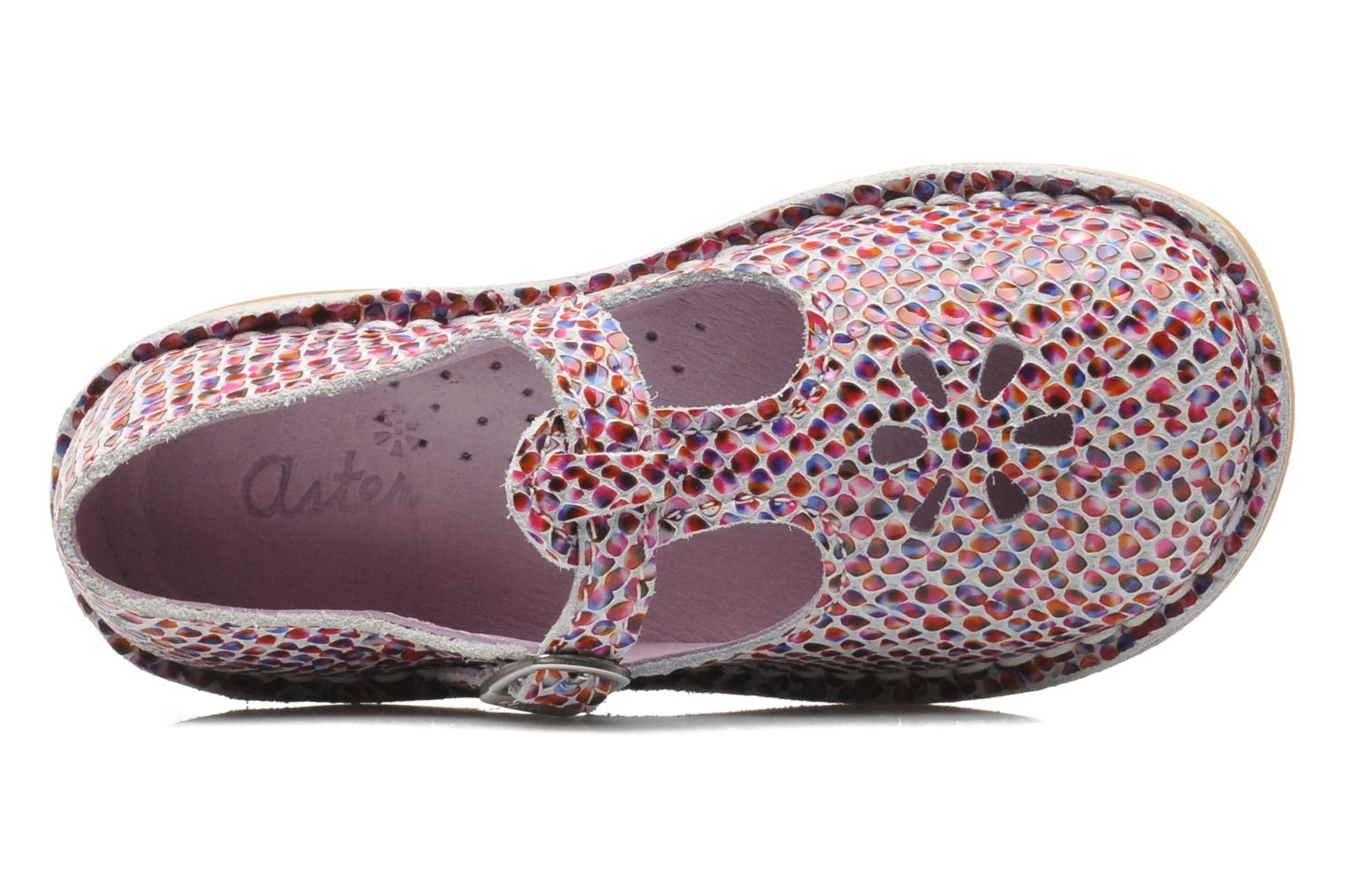 Ballerines Aster Dingo Multicolore vue gauche