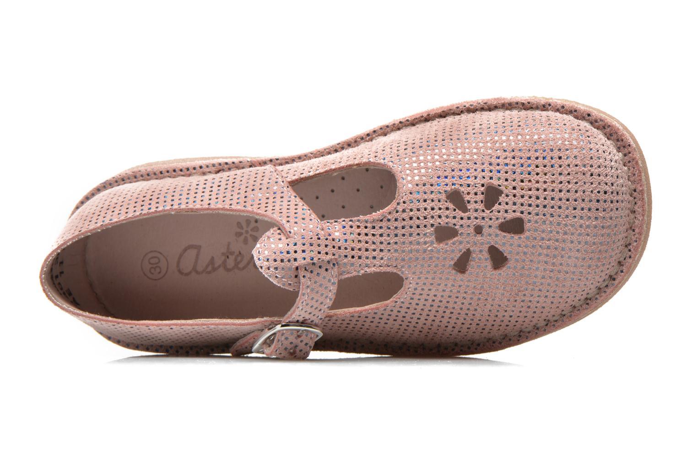 Ballerinas Aster Dingo rosa ansicht von links