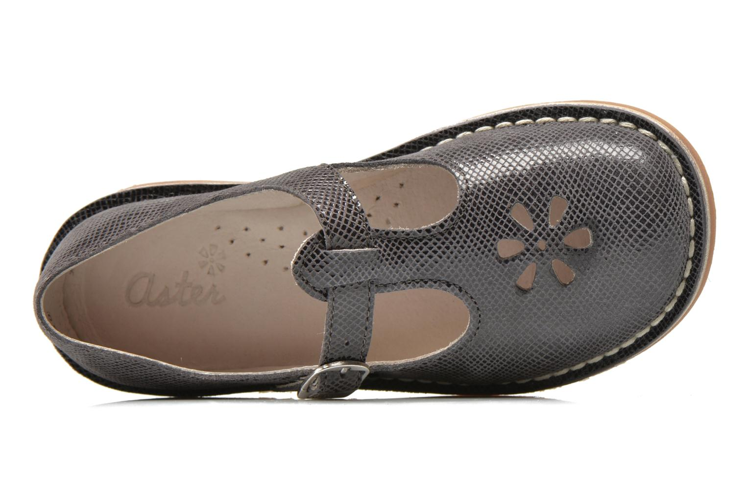 Ballet pumps Aster Dingo Grey view from the left