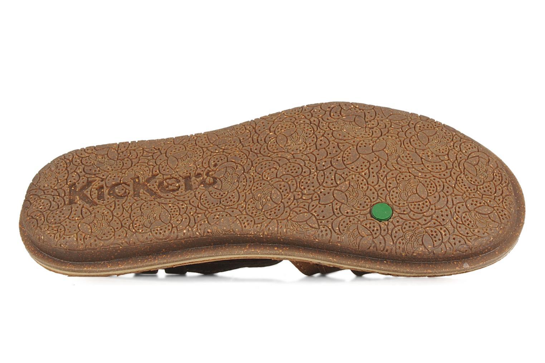 Sandales et nu-pieds Kickers Pinuts Marron vue haut