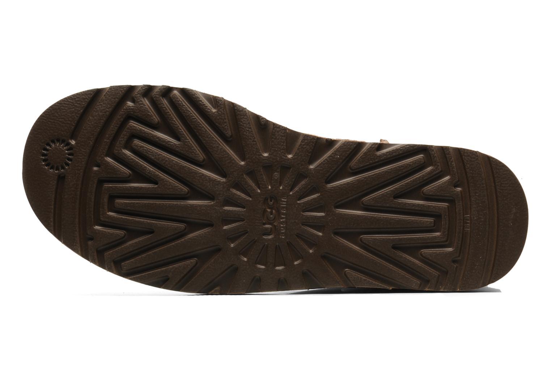 Stiefeletten & Boots UGG Bailey Button braun ansicht von oben