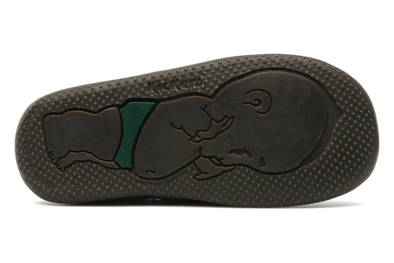 Chaussures à scratch Kickers Bilou Gris vue haut