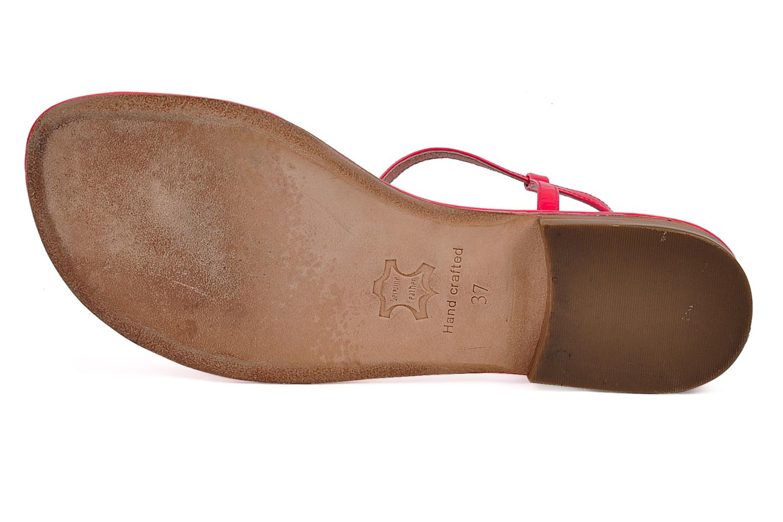 Sandales et nu-pieds C.Petula Marilyn Rose vue haut