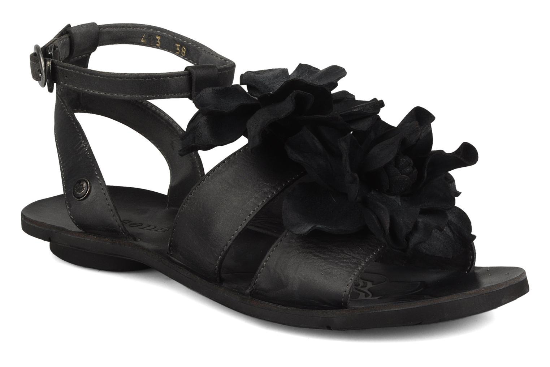 Daphni 413 Black