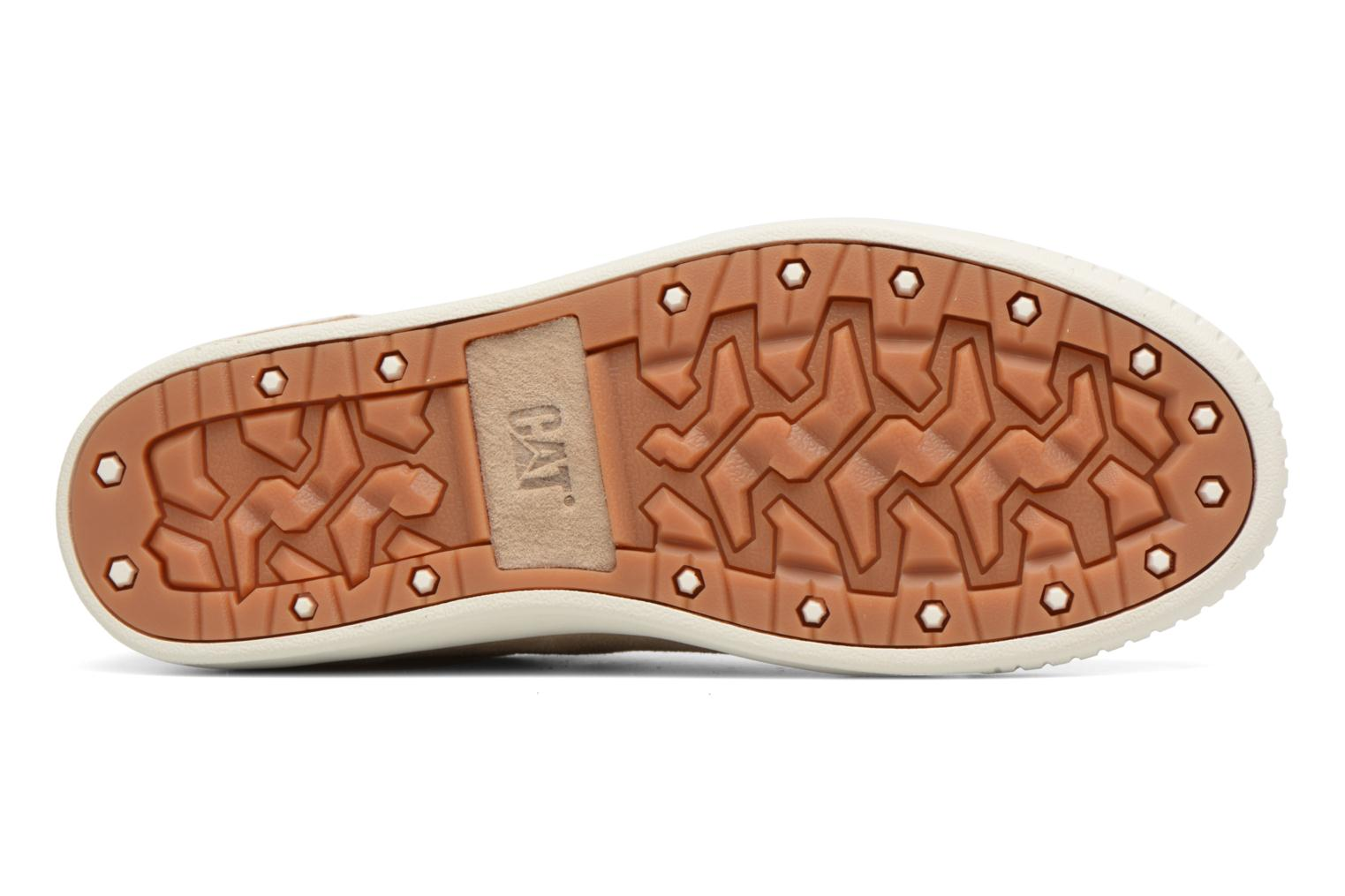 Trainers Caterpillar Modesto Beige view from above