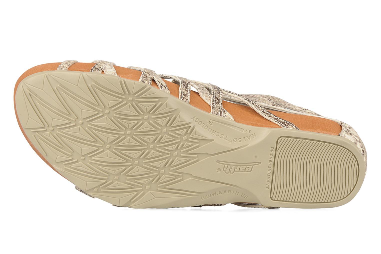 Sandali e scarpe aperte Kalso Earth Exquisite Beige immagine dall'alto