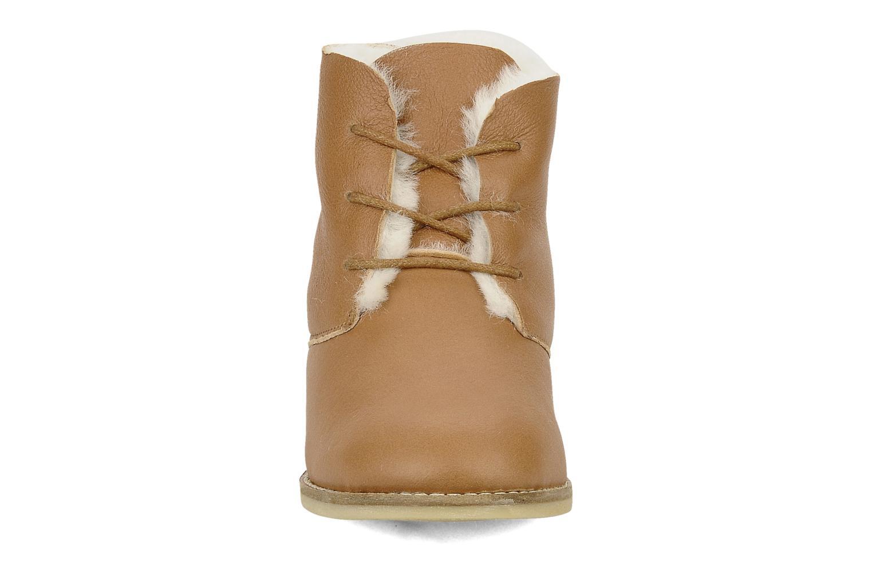 Snörade skor Mellow Yellow Kolchic Brun bild av skorna på