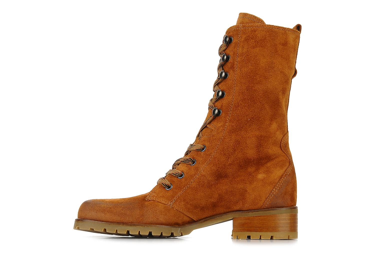 Bottines et boots Pare Gabia Tuilia Marron vue face