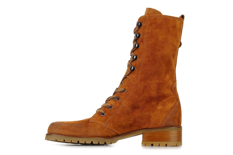 Boots en enkellaarsjes Pare Gabia Tuilia Bruin voorkant
