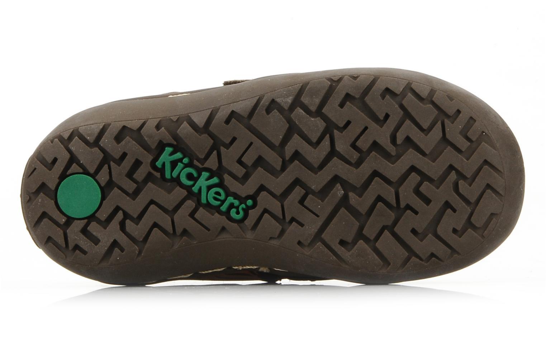 Zapatos con velcro Kickers Maellig Marrón vista de arriba