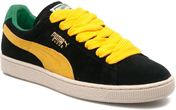 black-spectra yellow-amazon