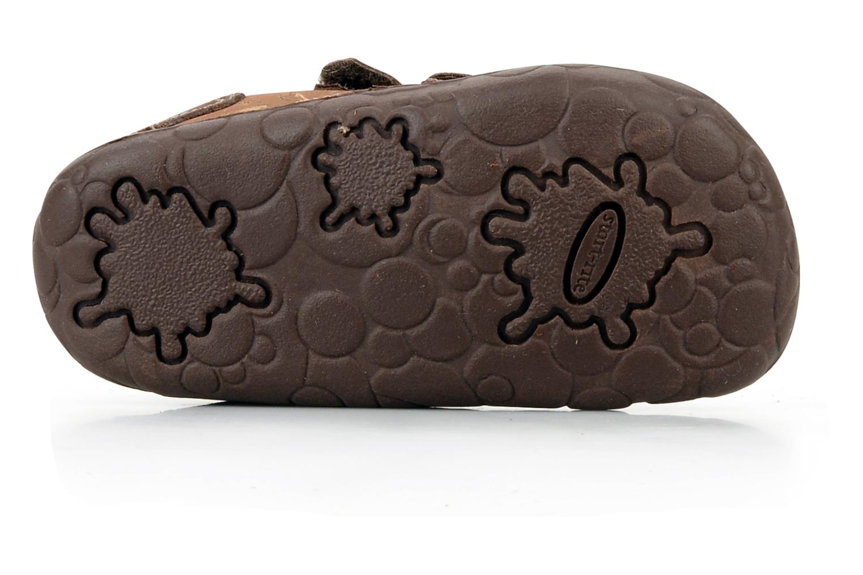 Chaussures à scratch Start Rite Fossil Marron vue haut