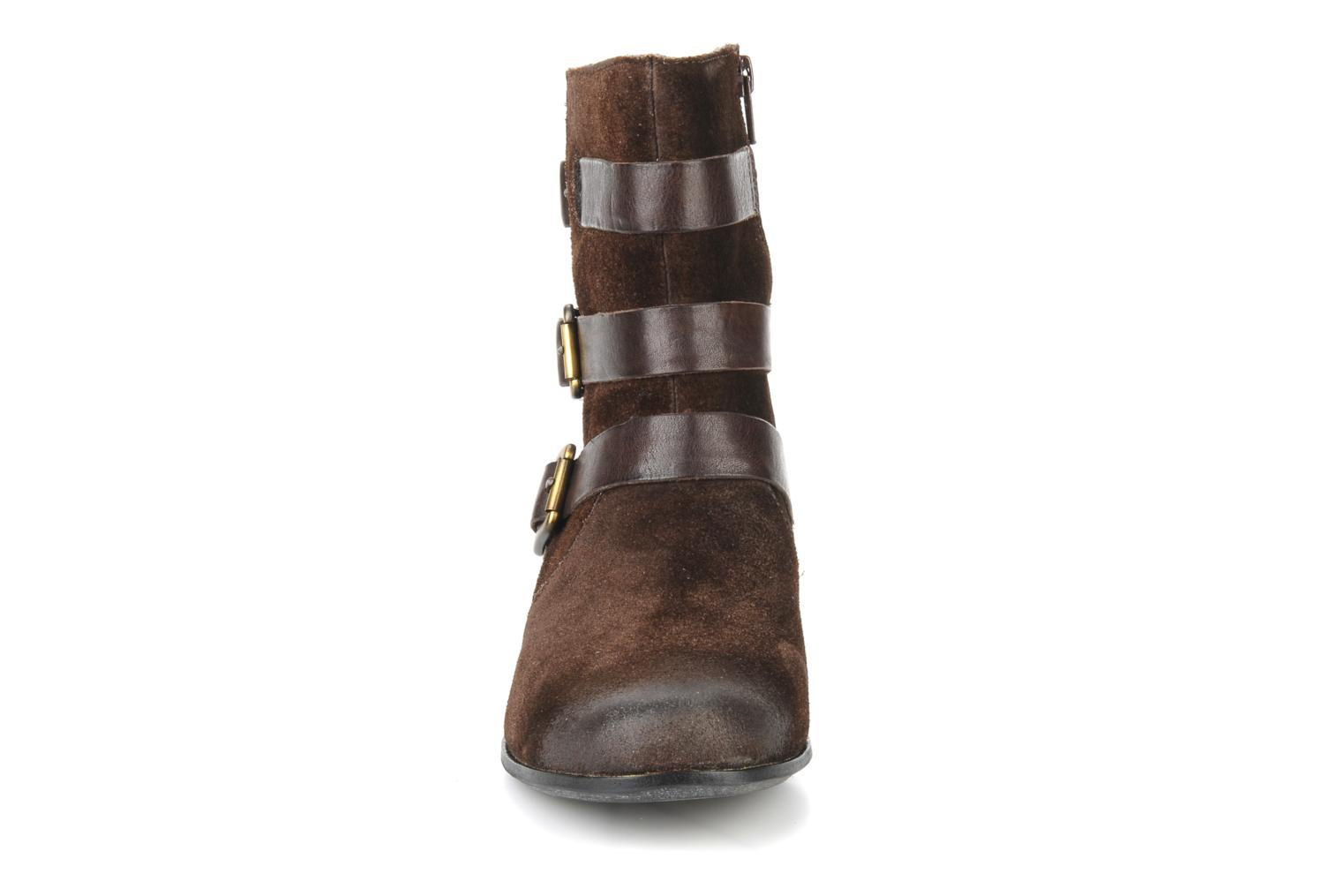 Ankle boots Clarks Meg kelly Brown model view