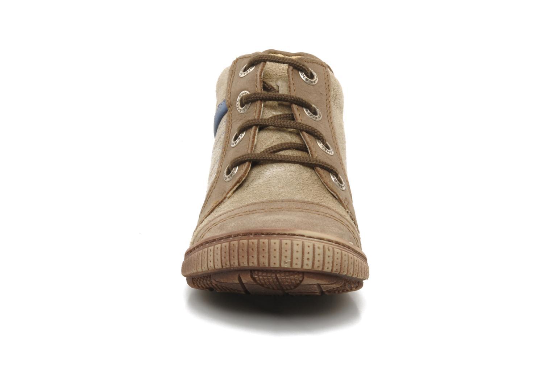 Boots en enkellaarsjes Aster HADDOCK Bruin model