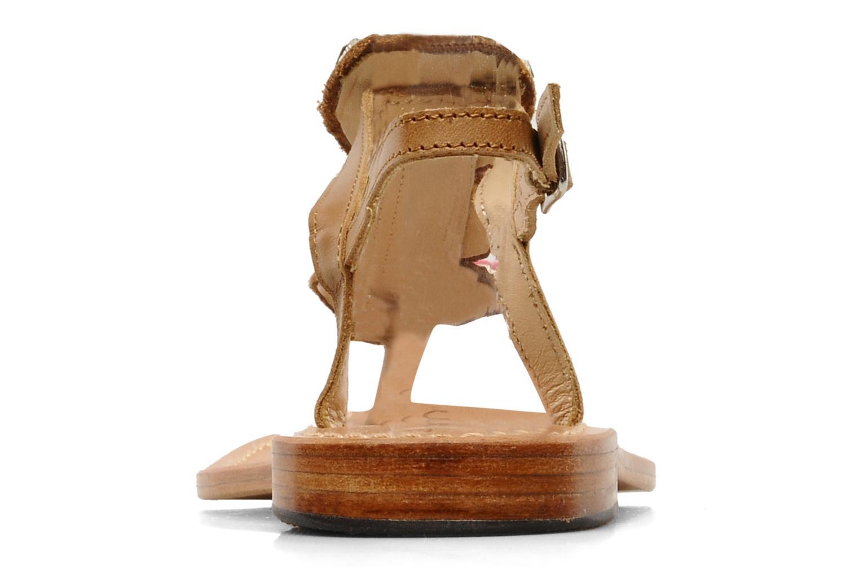 Lapi Camel