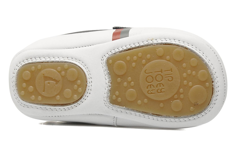 Sneakers Tip Toey Joey New Flashy Blå bild från ovan