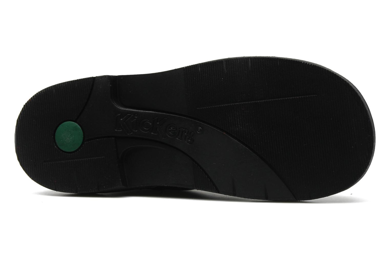 Chaussures à lacets Kickers Kick Col Perm Noir vue haut