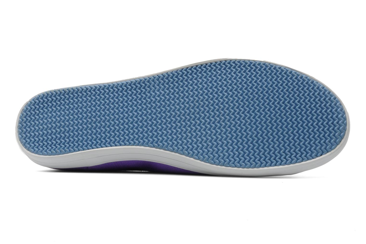 Sneakers Lacoste Ziane Pt Paars boven