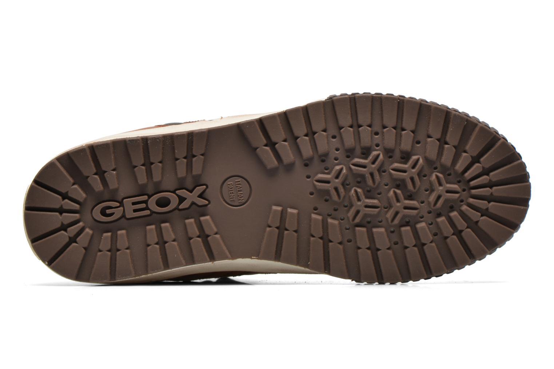 Sneaker Geox J MYTHOS D braun ansicht von oben