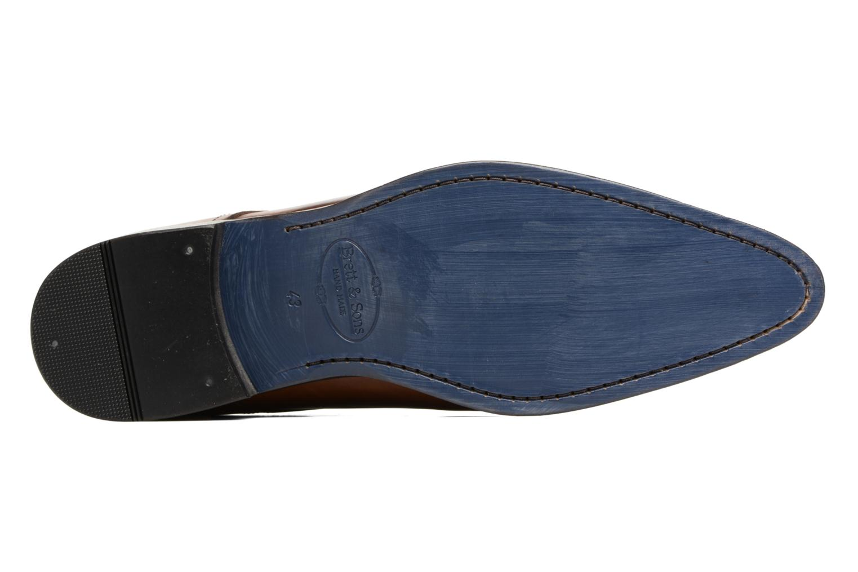 Zapatos con cordones Brett & Sons Mark Marrón vista de arriba