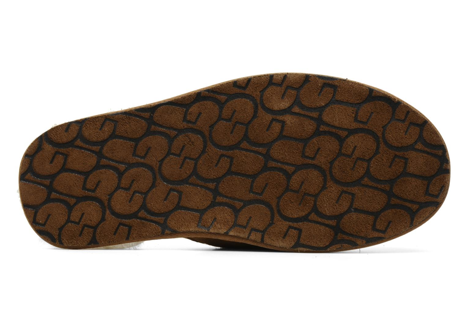 Slippers UGG Scuff Brown view from above