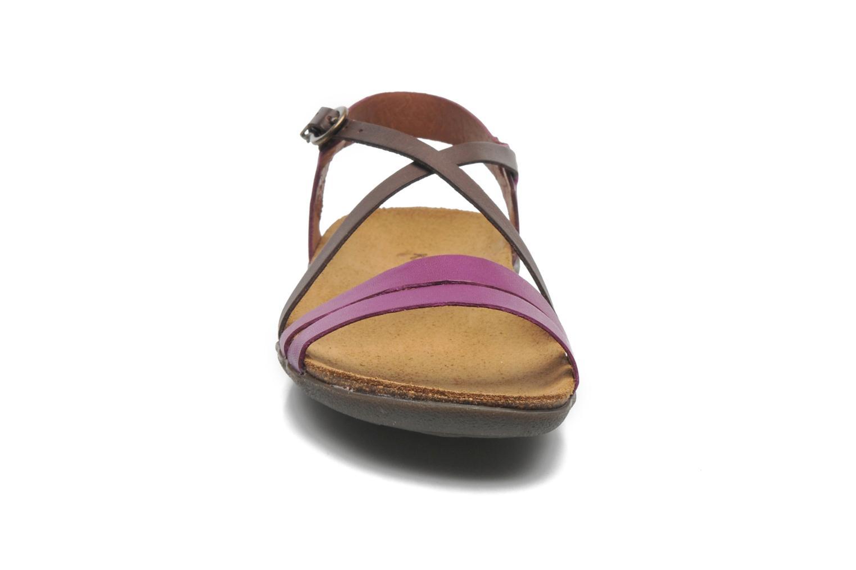 Sandalen Kickers Atomium lila schuhe getragen
