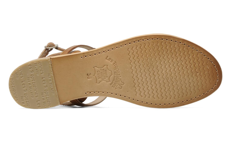 Sandali e scarpe aperte Les Tropéziennes par M Belarbi Hilan Marrone immagine dall'alto