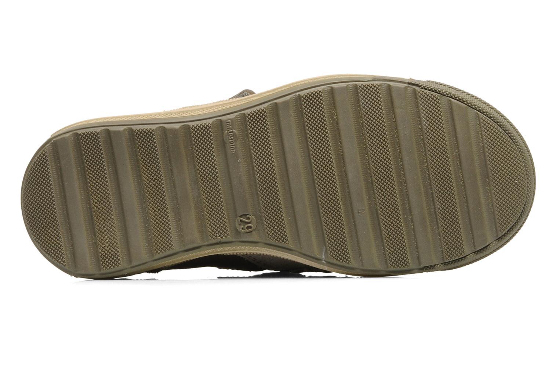 Sneakers Aster UTUBE Bruin boven