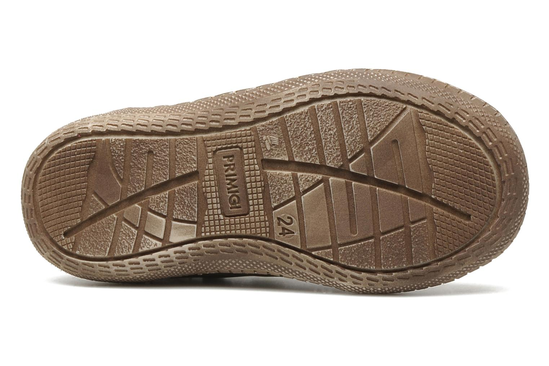 Chaussures à scratch Primigi Osbert-E Marron vue haut