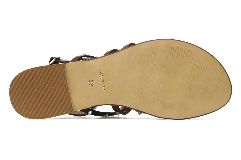 Sandalen U.S Polo Assn. Evita Bruin boven