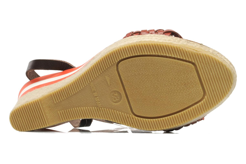 Sandalen U.S Polo Assn. Dora Rood boven