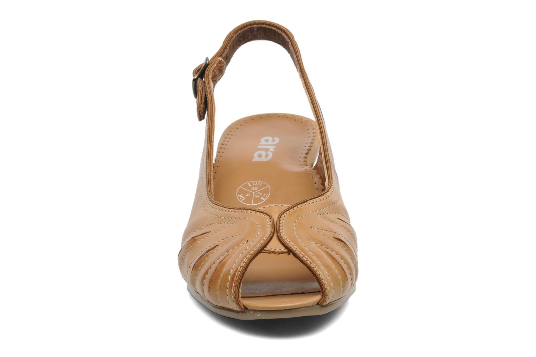 Sandales et nu-pieds Ara VE-S C Marron vue portées chaussures