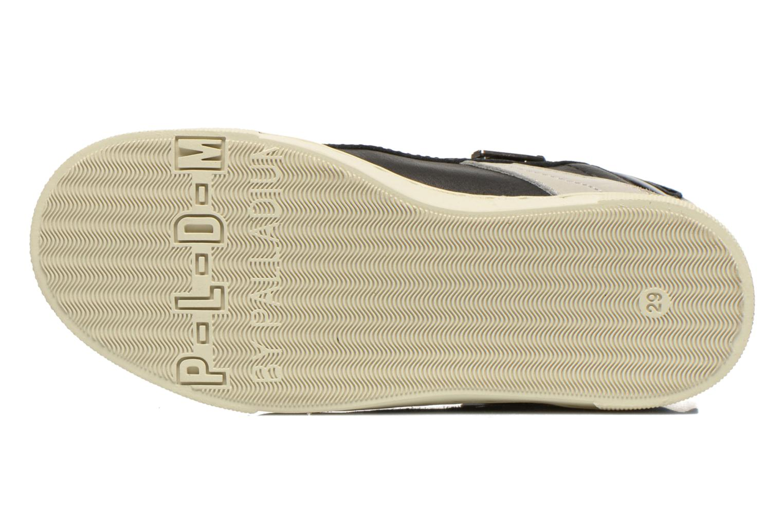 Sneakers P-L-D-M By Palladium Veleda TFL Zwart boven