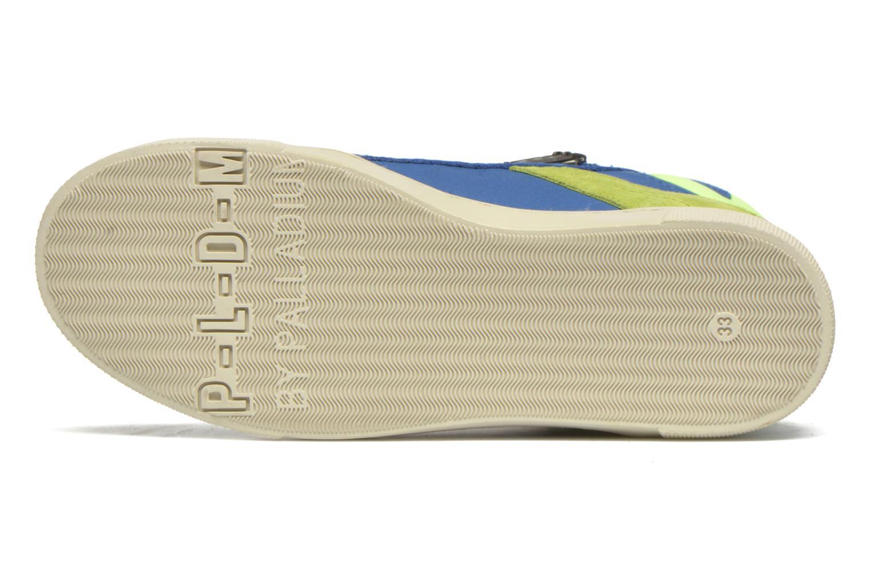 Sneaker P-L-D-M By Palladium Veleda TFL blau ansicht von oben