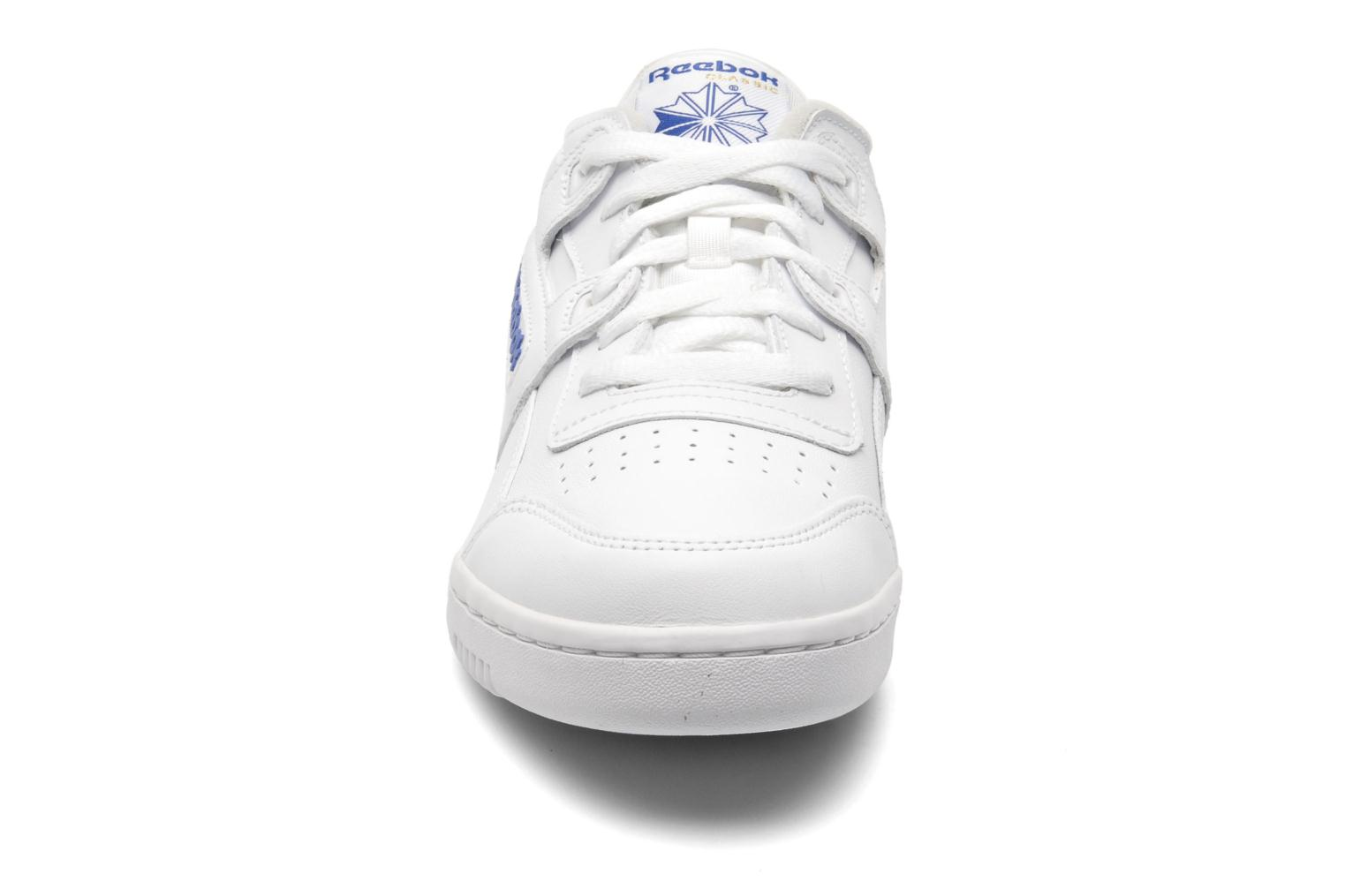 Workout Plus Wht/Royal