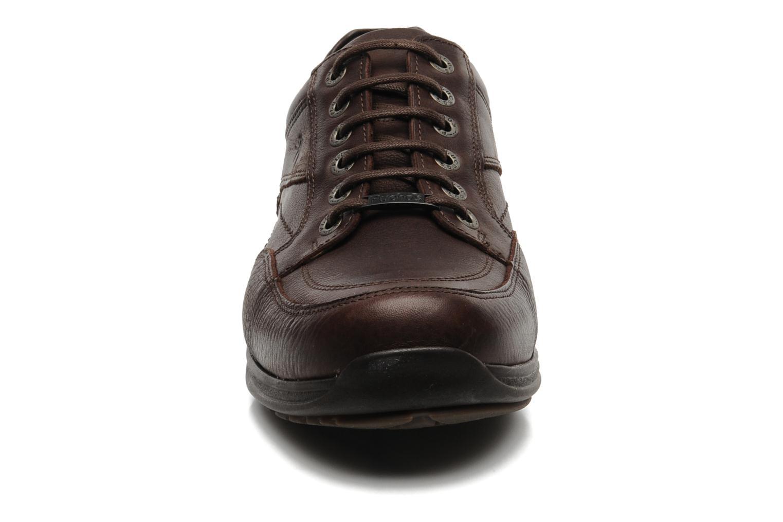 Chaussures à lacets Fluchos Jesus 8403 Marron vue portées chaussures