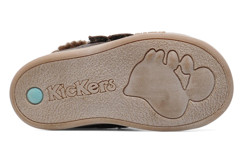 Chaussures à scratch Kickers TALKER Marron vue haut