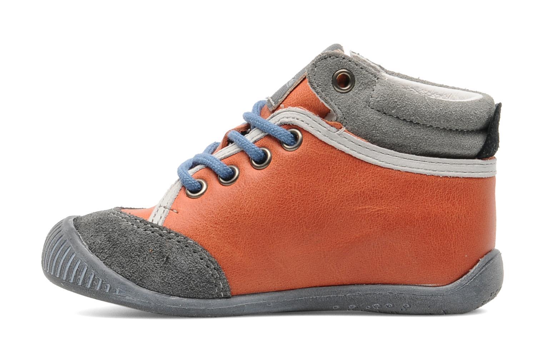 Fenix Orange