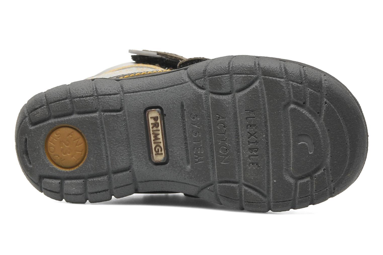 Stiefeletten & Boots Primigi MIRCO-E braun ansicht von oben