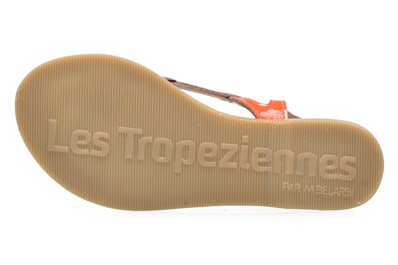 Sandalen Les Tropéziennes par M Belarbi ISATIS E rosa ansicht von oben