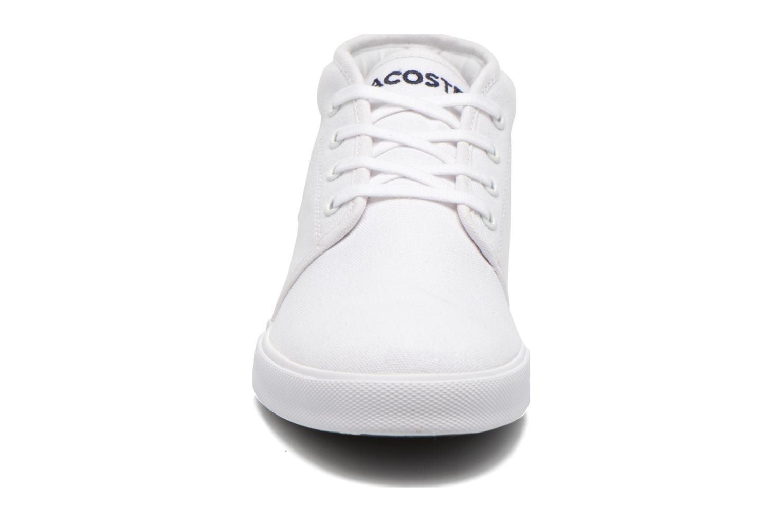 Baskets Lacoste Ampthill Lcr2 Blanc vue portées chaussures