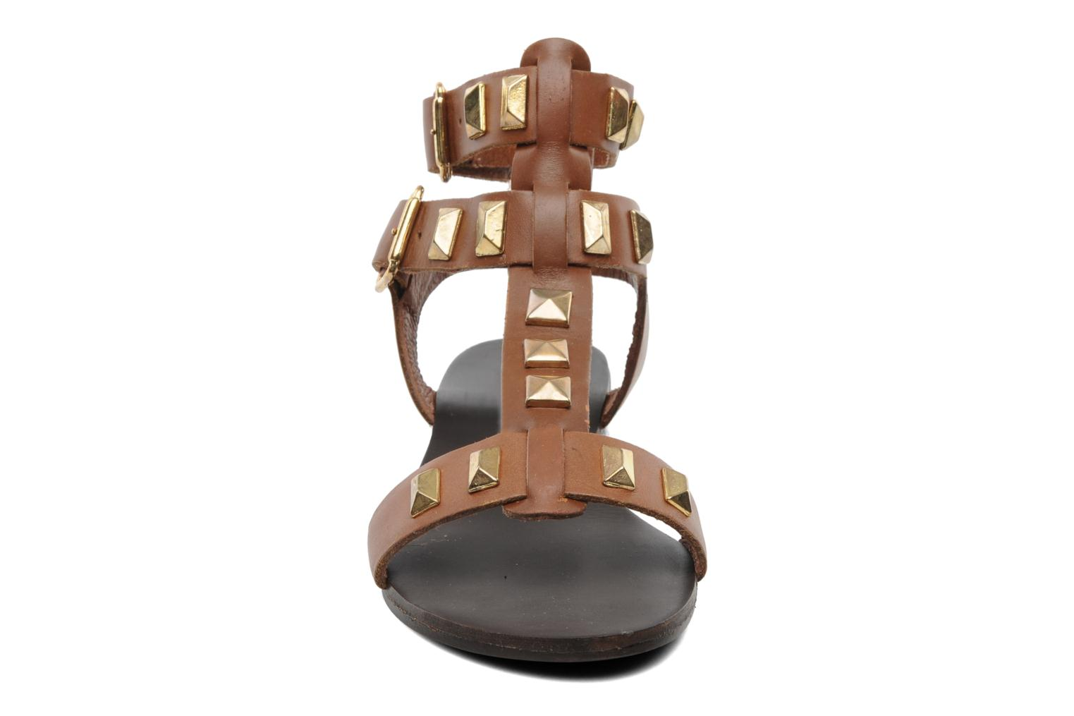 Sandals Steve Madden PERFECK Brown model view