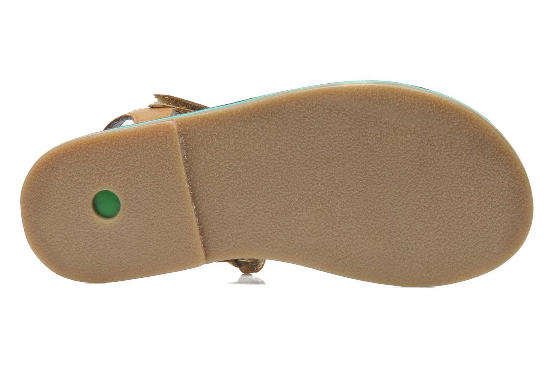 Sandales et nu-pieds Kickers Parallelo Marron vue haut