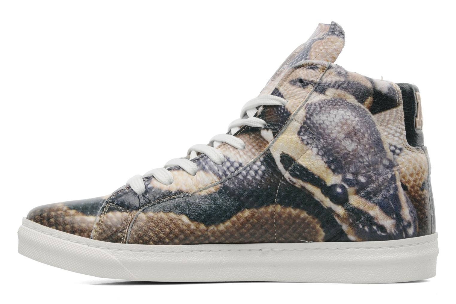 Sneakers American College Animal w Multicolore immagine frontale